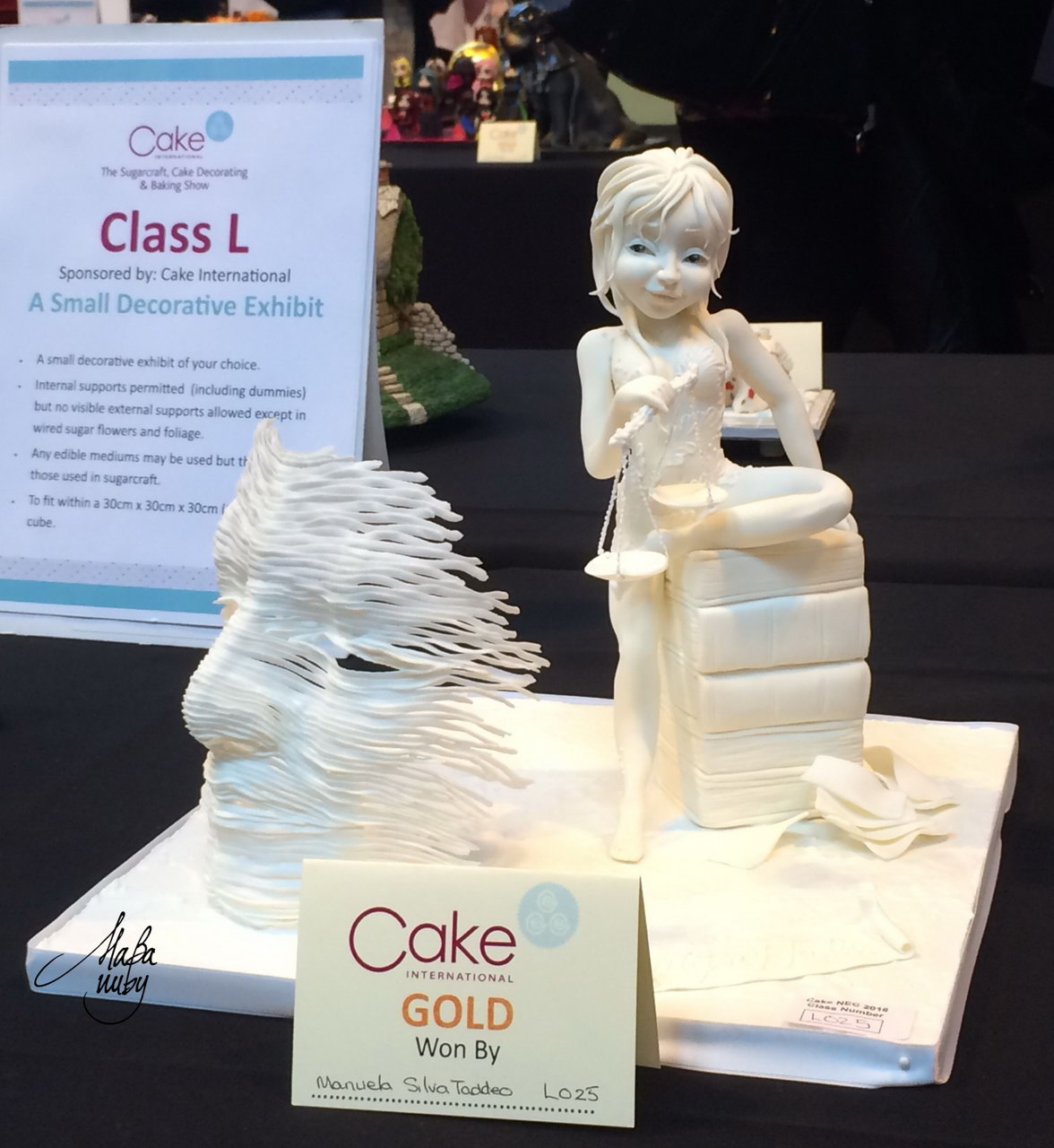 CAKE INTERNATIONAL BIRMINGHAM 2016 - Modelling